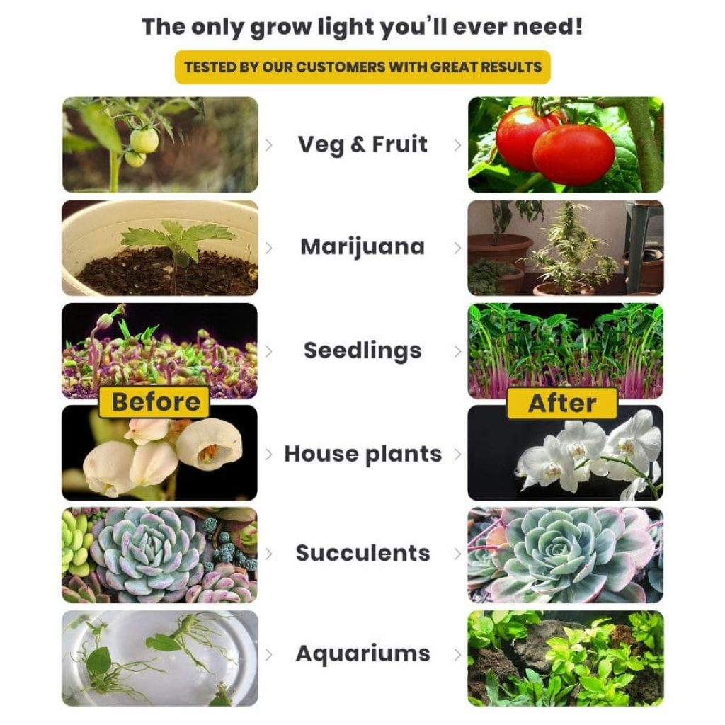 100w LED grow light - photo 3