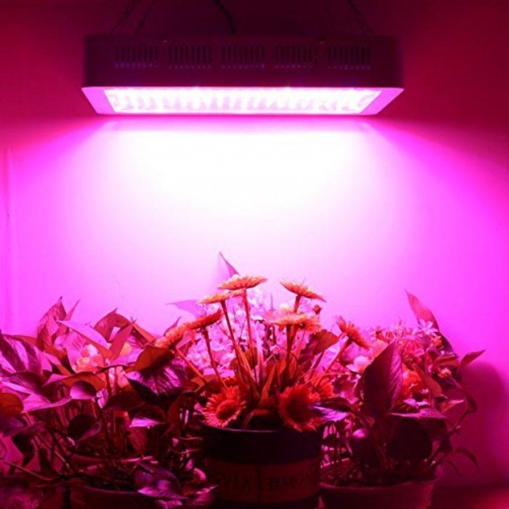Higrow 2000 grow light - photo 1