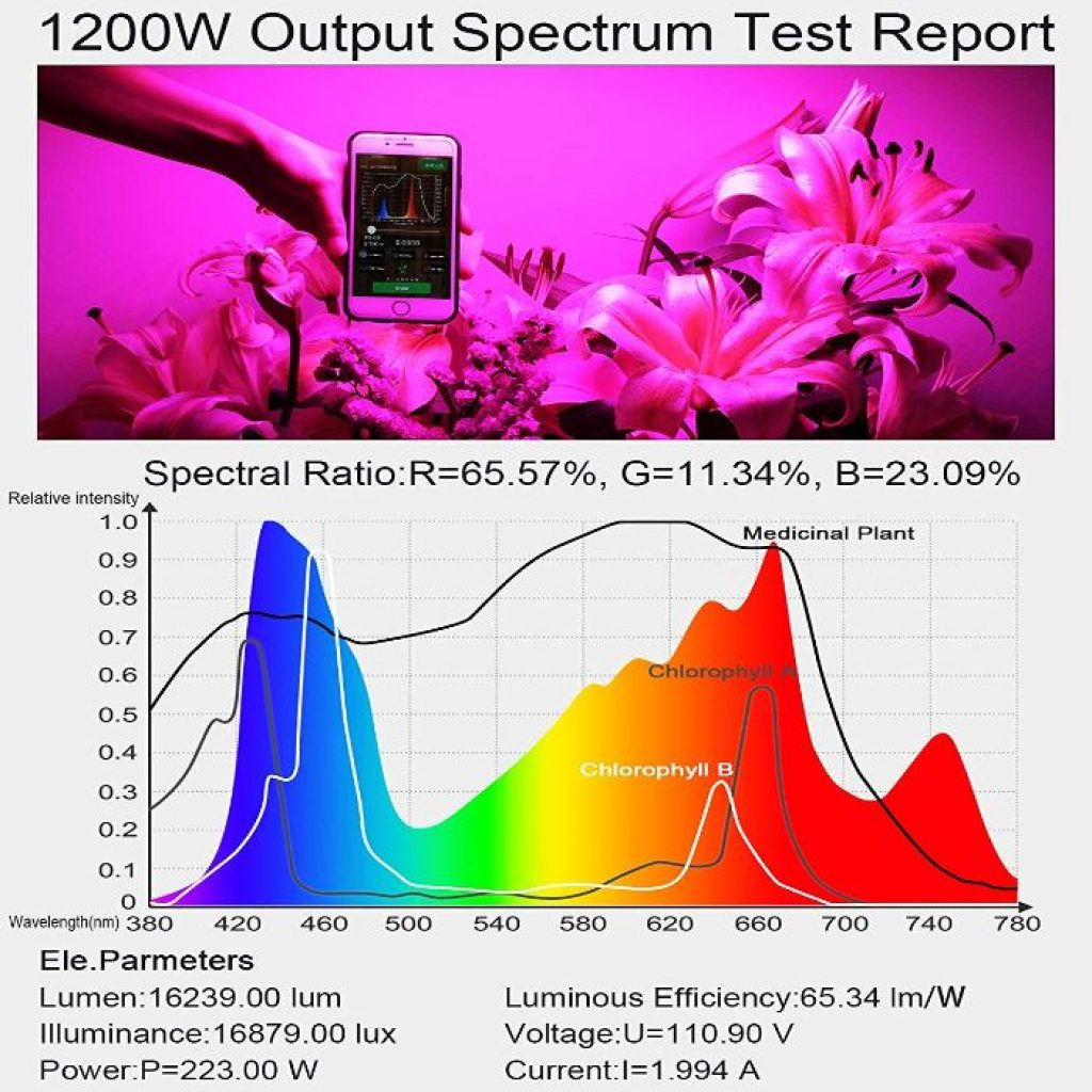 King Plus 1200w LED - photo 3