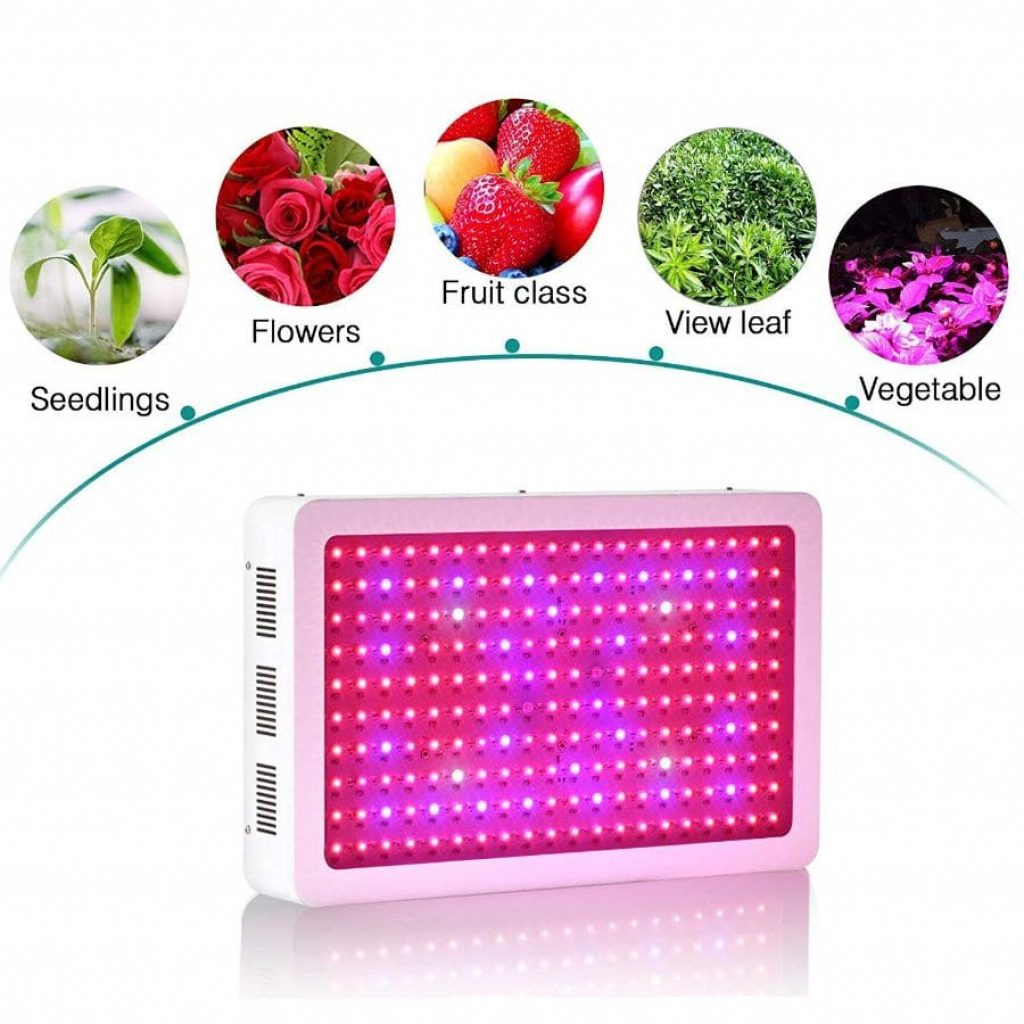 Roleadro 2000 led grow light - photo 2