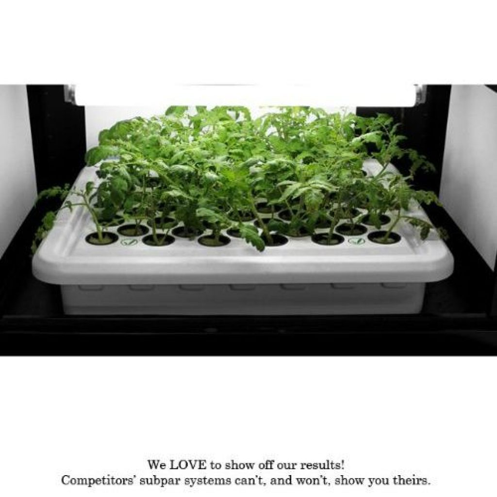 Supercloset box led grow light - photo 1