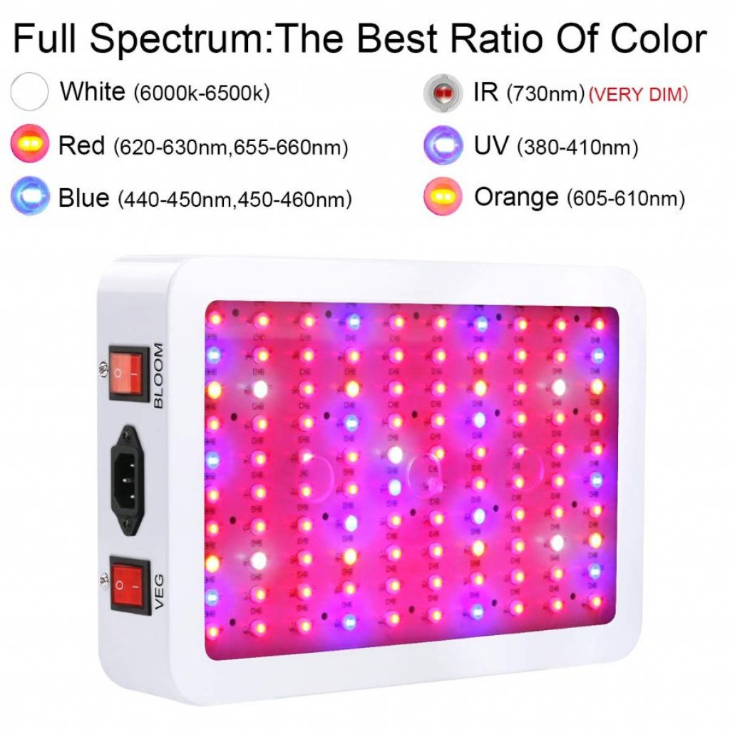 King plus 1000 LED LIght - photo 1