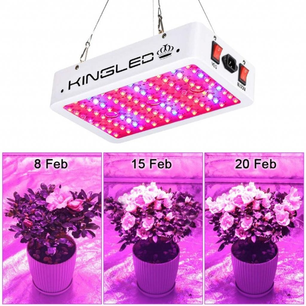 King Plus 1000 LED Grow light - photo 3