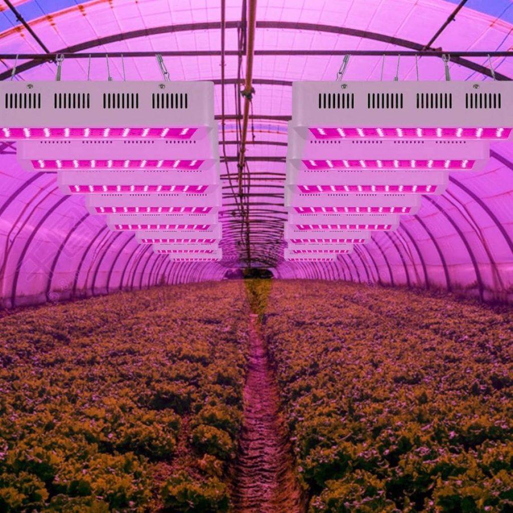 Roleadro 1000 grow light - photo 1