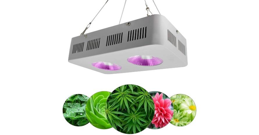 FCSFSF 400W COB LED Grow Light