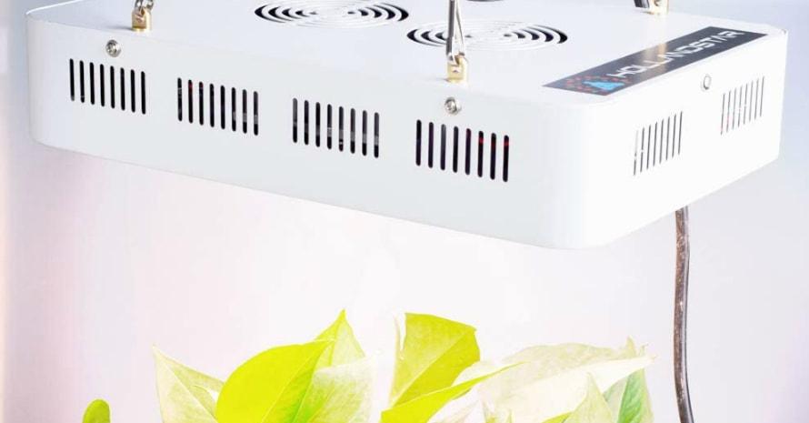 HollandStar Full Spectrum LED Grow Light