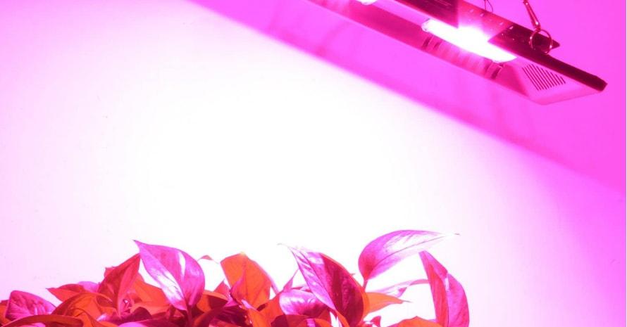 Waterproof 200W LED Grow