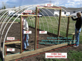 How to build a cheap and easy Hoop House