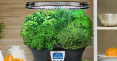 Aerogarden Reviews: The Best Models for Growing Organic Greens