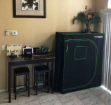 Best 2×4 Grow Tent – The Ideal Models for Optimal Results