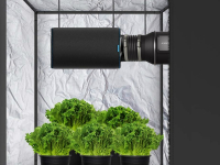 How to Set up a Grow Room on Your Own