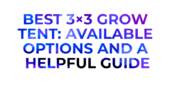 Best 3×3 Grow Tent: Available Options and a Helpful Guide