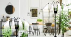200W LED Grow Light — Choose the One You Like