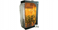 Best Grow Tent Kits to Buy for Indoor Use