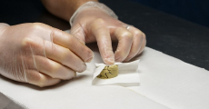 How to Press Kief into Rosin – Getting the Most Out of Your Hash