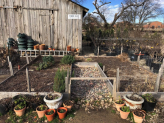 Work in the Garden and Vegetable Garden in December