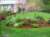 One of the most desired things in a garden is to have a magnificent lawn