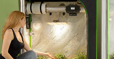 Grow Tent Reviews: How to Choose & Top Items