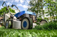 Regenerating the lawn: when and how to do it?