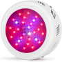 Roledro LED Grow Lights